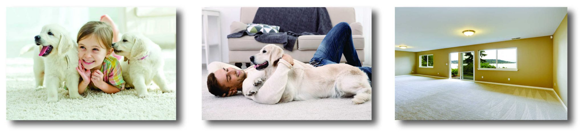 Enjoy Clean Carpet! Highest rated, pet friendly, lowest prices & local carpet cleaning.