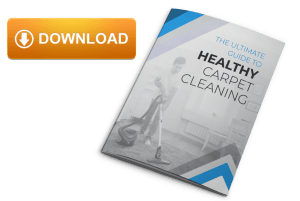 Carpet Cleaning Healthy Download
